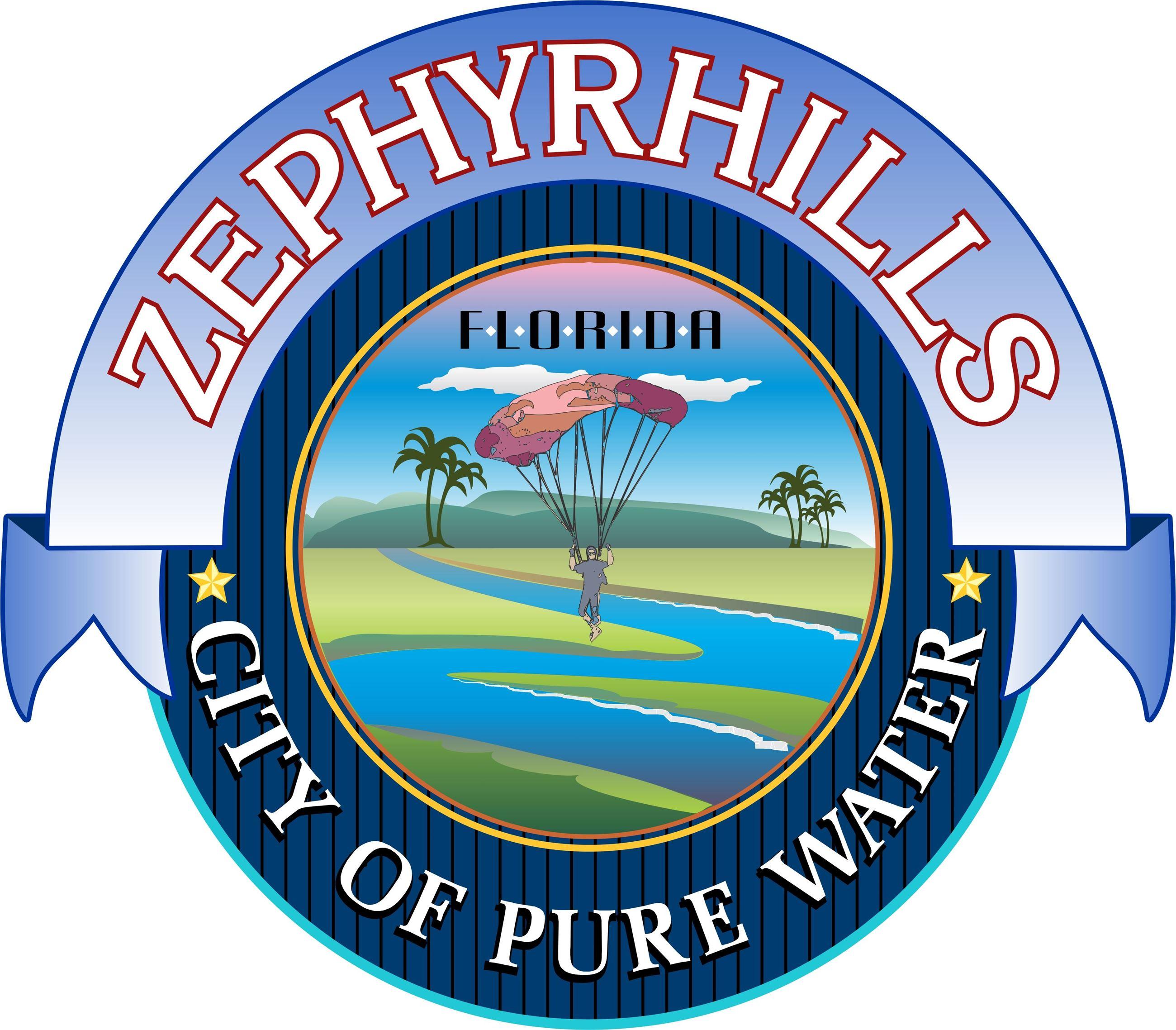 City Z-hills Logo